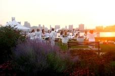 flowers sunset crowd
